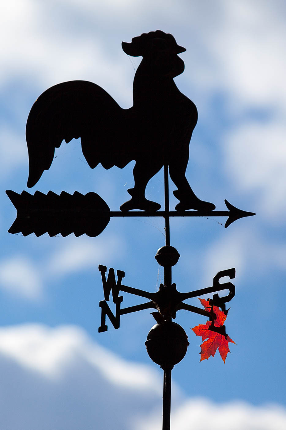 Weather Vane with Maple Leaf