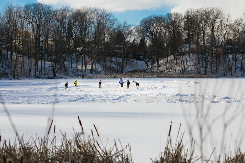 pond hockey, rouge park
